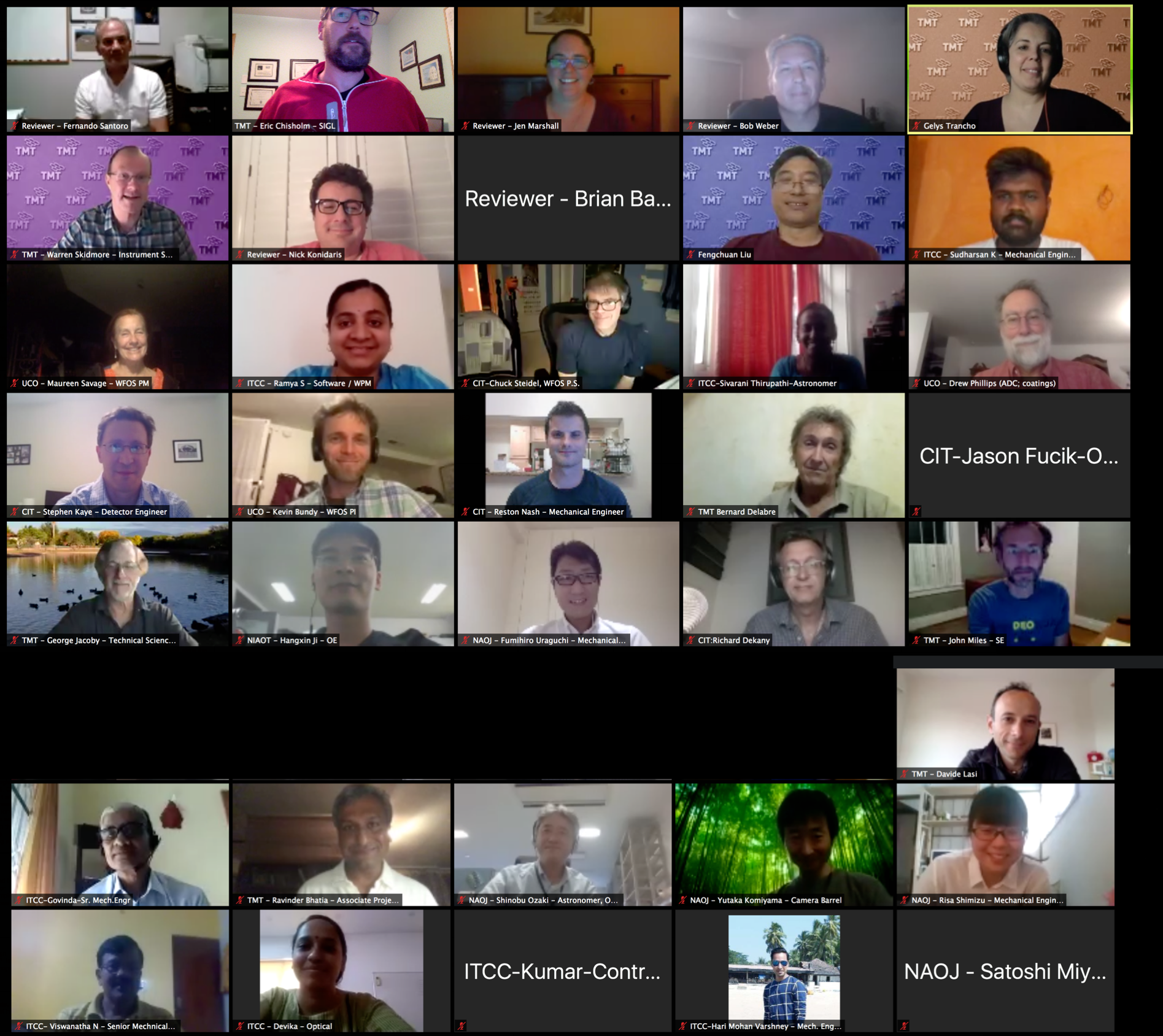 Screenshot of the participants in the TMT WFOS Instrument interim Conceptual Design Review