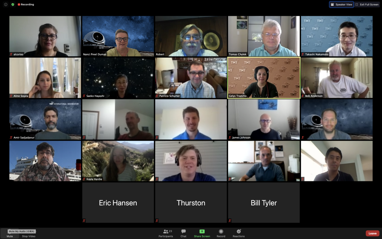 Screenshot of the participants of the TMT's Primary Mirror Cleaning Preliminary Design Review on 19 August 2020