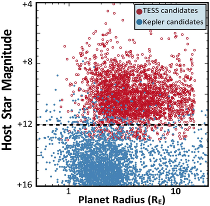 Planet yields from TESS